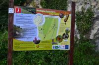 Sfeer - Visé ~ Montagne Sainte Pierre (Luik) 25-07-2021 ©Steve Wullaert