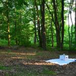 Sfeer - Arlon ~ Domaine Privé (Luxemburg)  (17-06-2017) ©Steve Wullaert