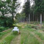 Sfeer - Büllingen - Lanzerath ~ Ensebach-Our (Ravel) (Luik) 19-07-2021 ©Steve Wullaert