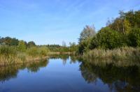 Sfeer - Waterschei - Genk - As ~ Mijnterril ~ Klaverberg (Limburg) 28-09-2018 ©Steve Wullaert