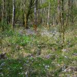 Sfeer - Beauraing ~ Grand Quarti (Namen) 01-05-2021 ©Steve Wullaert