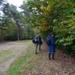 Sfeer - Diepenbeek ~ De Maten (Limburg) 17-10-2020 ©Steve Wullaert