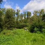 Sfeer - Kinrooi ~ Het Vijverbroek (Limburg) - 22-08-2020 ©Steve Wullaert
